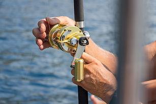 Caña de pescar dorada