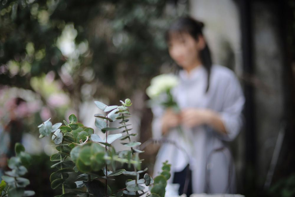 Premier fleuri, avec une personne floutée en arrière plan