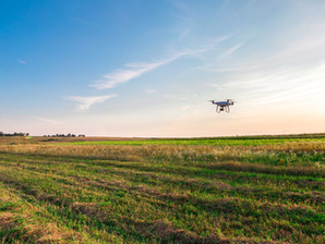 How Technology Improves Sustainability in Agriculture