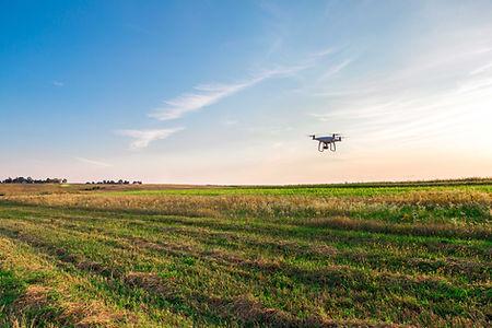 Agriculture Drone Survey
