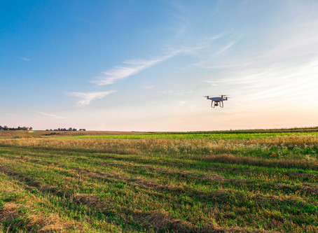 Essential Ways Drones Are Being Used To Help The Environment