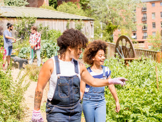 Exciting news about the community garden - please support our grant application!