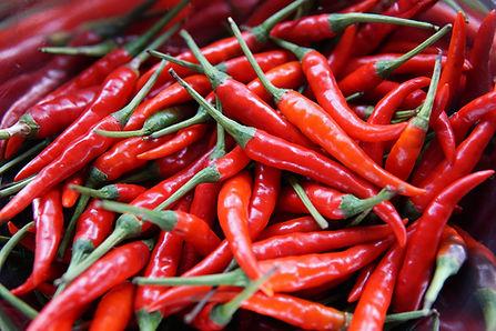 Würzige Paprika