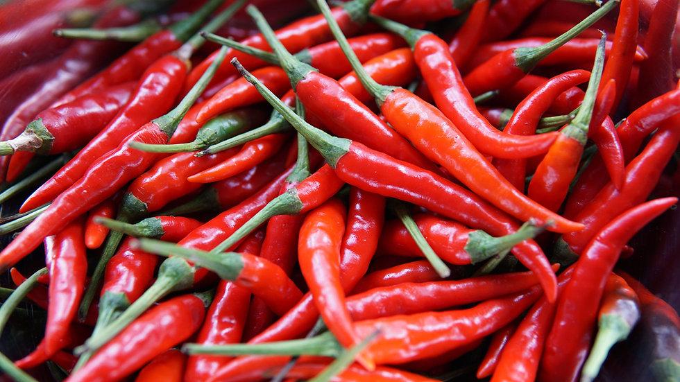 Spicy Hot Salsa
