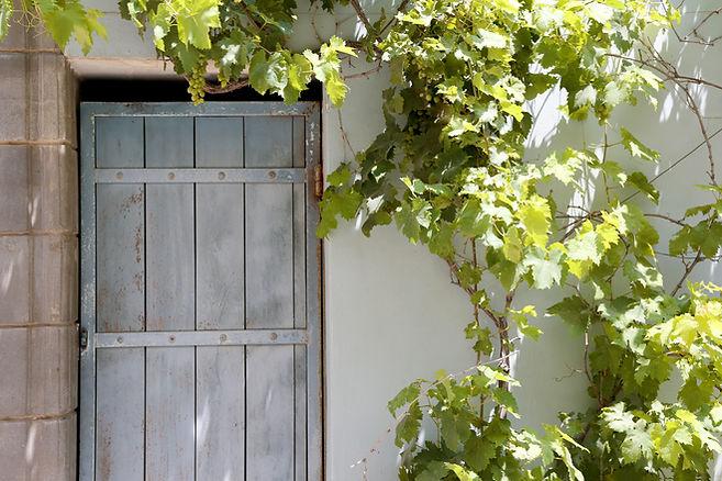 木製のドアの上のブドウのつる