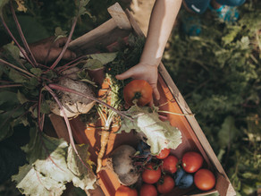 Fruits & Veggies: 10 Ways To Sneak Them Into Your Families Diet