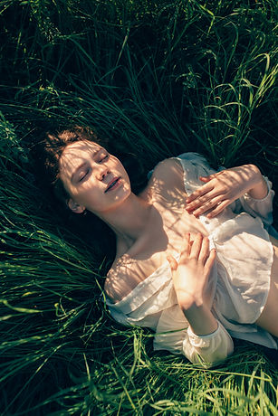 Laying in Meadow