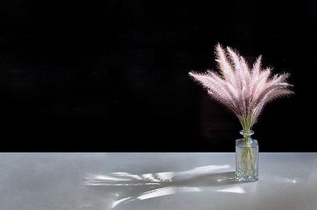 Pampas Flower