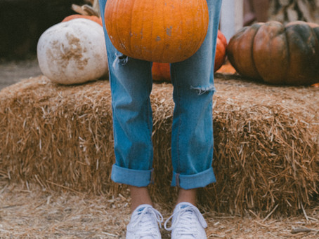 Healthy Pumpkin Muffins > Sugary Pumpkin Rolls