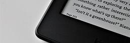 Elektronik kitap okuyucusu