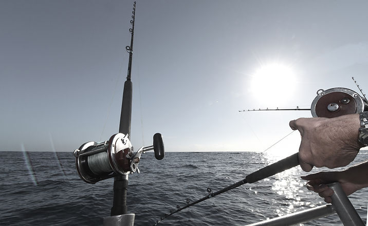 Caña de pescar