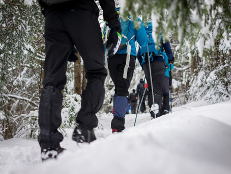 10 Winter Hiking Essentials