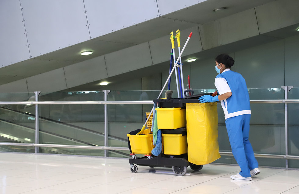 Professional Cleaning Worker