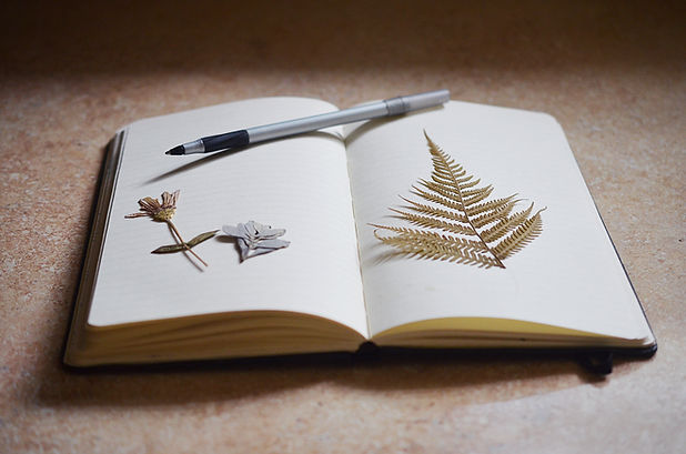 Notebook Dried Plants