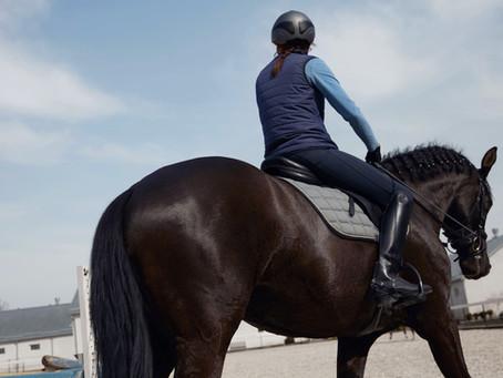 Discover Florida Horse Country, Trails & Equestrian Centers