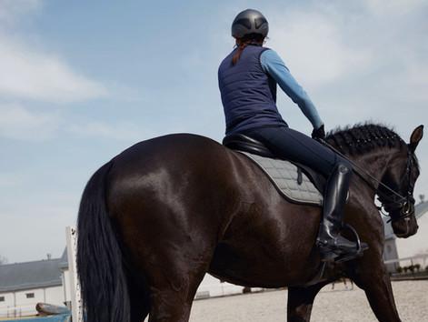 Recognize subtle lameness in horses