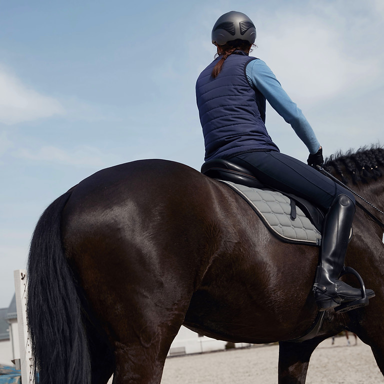 Dressage/Test Riding with Tania Johnson