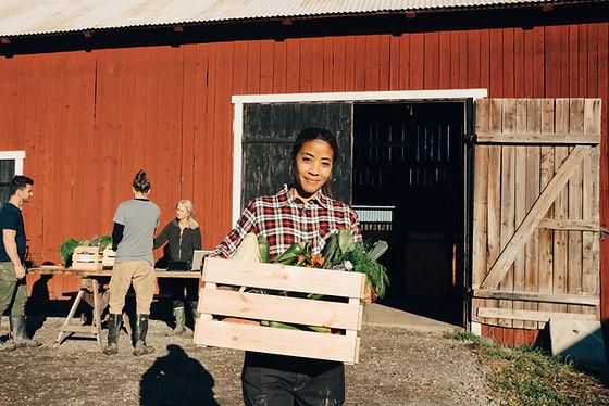Frau mit Kiste Gemüse