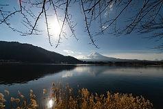 Utsikt över Mt.Fuji