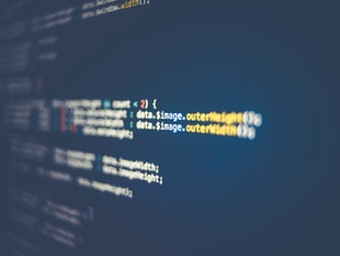 The Liability of Software Developers