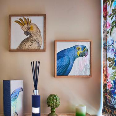 Bird Posters