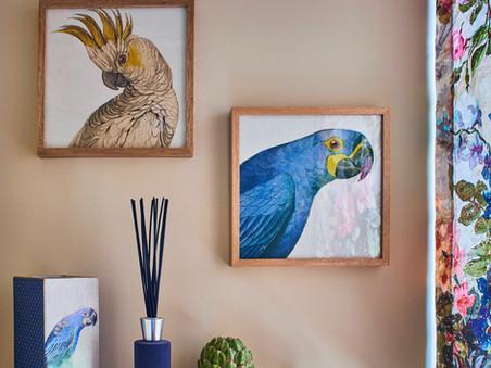 Dicas para a arte integrar a decoração de ambientes