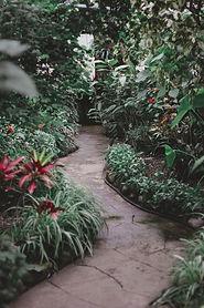 Caminho do jardim