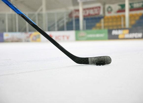 Хоккейный тренировочный центр | ледовый дворец | финансовая модель бизнес плана