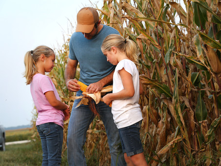 Grain Demand May Lead to Higher Prices