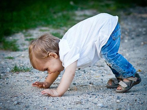 CAP AEPE - EP1-T1/2 - les Degrés de Développement de l'enfant rapport GIAMPINO