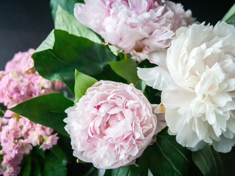 5 Best Flowers To Give Mom On Mother's Day