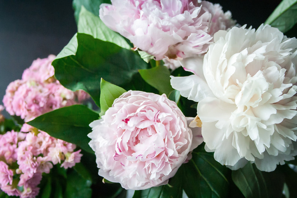 Bouquet of Peonies | Pagoda Collective