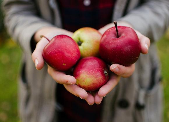 Apple, Fuji 3# Bag