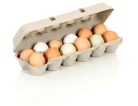 Free range backyard chicken eggs