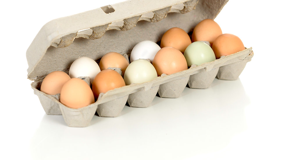 Hatching eggs variety pack - 2 dozen / Priority shipping