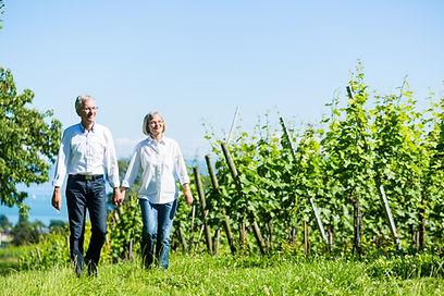 Weingebiet erkunden