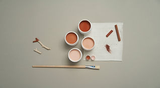 Paints and Brush