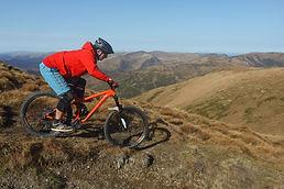 Free Style Mountainbike