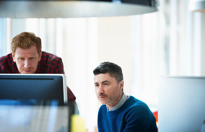 Two ERP consultants looking at a computer screen