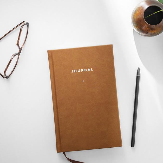 The Journal of My Life
