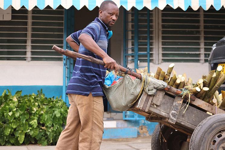 Sugarcane Seller