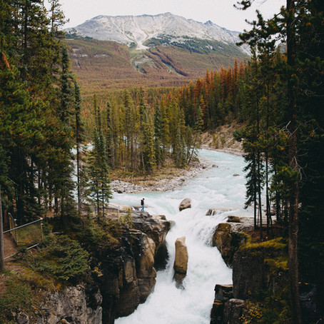 Nature Soundscapes Reduce Stress