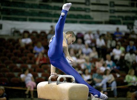 Gymnastics Horse