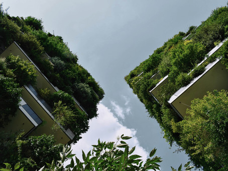 Reduce Reuse Recycle: THE 3 MAGICAL MANTRAS to keep our Offices Eco-Friendly