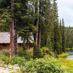 Meadow Pine Cabins