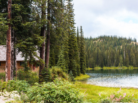 Sarah, would you rather spend a night in a luxury hotel or camping in beautiful scenery?