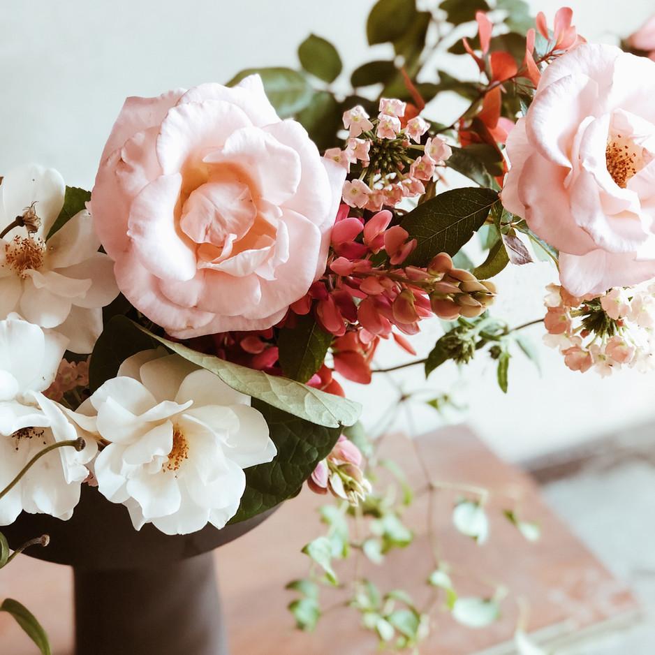 Rose Roz