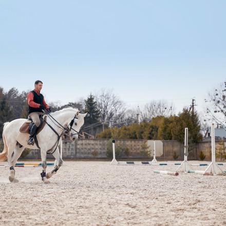 Working on your horse's postural muscles can improve performance