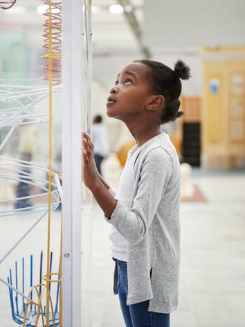 Digital Skills   Science Technology Engineering Math