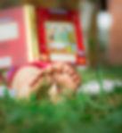 Enfant, lecture, herbe